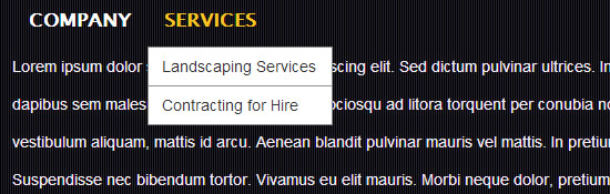 Dropdown Menu for Services of a business