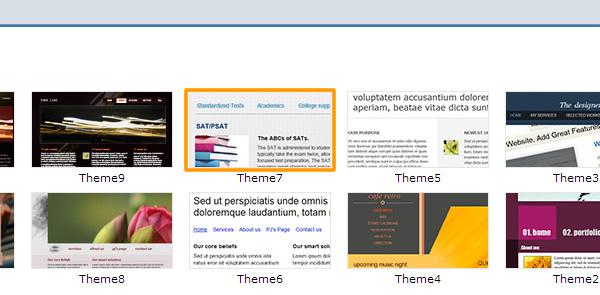 Website Theme Selection